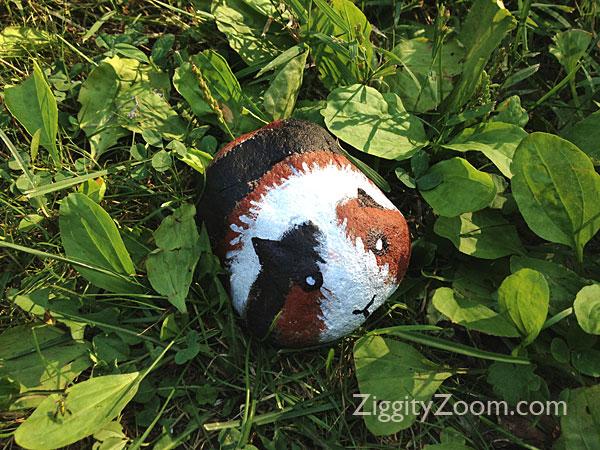 guinea pig craft