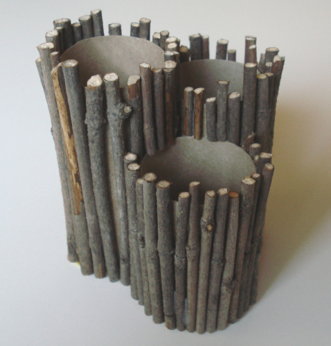 Nature Inspired Twig Pencil Holder Craft
