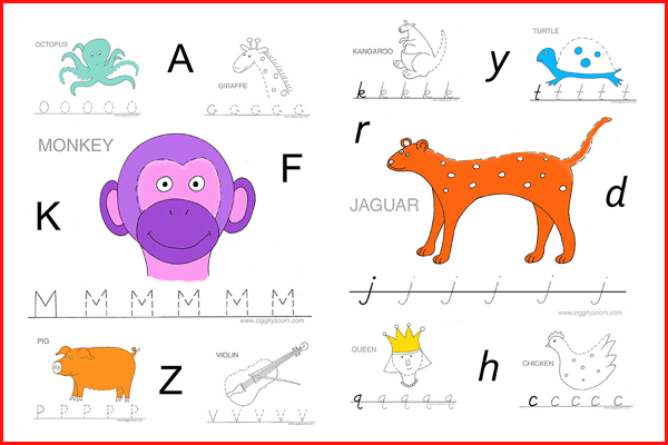 Alphabet Tracing Preschool Kindergarten Workbook