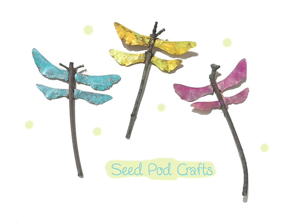Nature Craft Projects